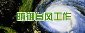 防御台风工作
